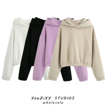 Sweater / sweater Autumn 2020 XS,S,M,L Long sleeves have cash less than that is registered in the accounts Socket singleton  routine Hood easy street raglan sleeve Splicing Europe and America