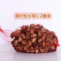 Dried flower / petal / bag / Branch Dried flower bag