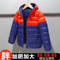 Cotton padded jacket male No detachable cap Cotton 96% and above Shaoyinbears Navy, black, blue, red, orange, blue orange, black red For 140 yards, 50-70 Jin, 70-90 Jin for 150 yards, 90-110 Jin for 160 yards, 110-130 Jin for 170 yards and 130-150 Jin for 180 yards are recommended routine No model