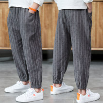 trousers Other / other male 110cm,120cm,130cm,140cm,150cm,160cm,170cm Grey, Navy summer Ninth pants leisure time There are models in the real shooting Knickerbockers Leather belt middle-waisted Don't open the crotch NLPIG-JK91186M Three, four, five, six, seven, eight, nine, ten, eleven, twelve