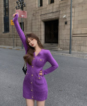 Dress Winter 2020 violet Average size Short skirt singleton  Long sleeves commute V-neck High waist Single breasted A-line skirt routine 18-24 years old Other / other Korean version