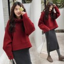 suit Other / other Picture color M,L,XL,XXL Korean version Long sleeve + skirt winter routine Solid color Pure cotton (95% and above) Cotton liner