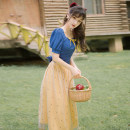 Fashion suit Summer 2020 S,M,L Blue top + Yellow gauze skirt