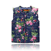 Vest neutral Rose dark blue, rose Khaki 100cm,110cm,120cm,130cm,140cm Other / other No season routine No model Single breasted Versatile polyester fiber Cartoon animation Polyester 90% cotton 10% Class C Silk floss Cotton liner