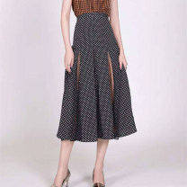 skirt Summer of 2019 1/XS 2/S 3/M 4/L 5/XL black Mid length dress Versatile High waist A-line skirt Dot Type A 25-29 years old 1200155-1S06411-001 More than 95% Chiffon Zosainfu / Zhuo Shengfu polyester fiber Hollow lace Polyester 100% Pure e-commerce (online only)