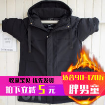 Cotton padded jacket male No detachable cap Cotton 96% and above CAT&TIGER Black 4908 printed English cotton padded jacket 2XL suggests 105-120 Jin, XL suggests 90-105 Jin, 3XL suggests 120-135 Jin, 4XL suggests 135-150 Jin, 5XL suggests 150-165 Jin thickening Polyester 100% Cotton liner