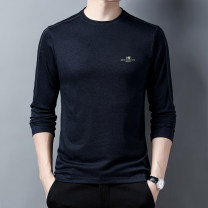 T-shirt Youth fashion Blue purple deep green Plush and thicken 165/S 170/M 175/L 180/XL 185/XXL 190/XXXL Nine Yan Long sleeves High collar Super slim daily Other 100% Spring 2021 Pure e-commerce (online only)