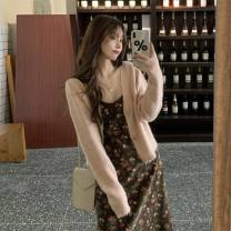 Dress Autumn 2020 S M L XL longuette Two piece set Long sleeves commute V-neck High waist Broken flowers Socket A-line skirt routine 18-24 years old Type A Beautiful beauty Korean version 66168PhkI More than 95% other Other 100% Pure e-commerce (online only)