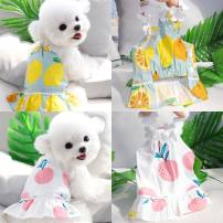 Pet clothing / raincoat currency Dress S back length 20cm (2 kg recommended), m back length 25cm (3-5 kg recommended), l back length 30cm (6-8 kg recommended), XL back length 36cm (9-11 kg recommended) Other / other princess White bayberry, gray blue lemon