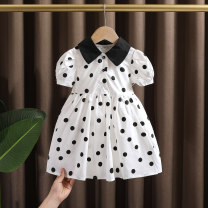 Dress white female Dr. Black  80cm,90cm,100cm,110cm,120cm,130cm Cotton 95% other 5% summer Korean version Short sleeve Dot cotton A-line skirt 2021-4.14-B09 Class A 12 months, 9 months, 18 months, 2 years old, 3 years old, 4 years old, 5 years old, 6 years old, 7 years old Chinese Mainland