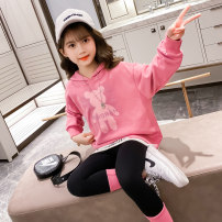 suit Tong Chu Pink Blue 110cm 120cm 130cm 140cm 150cm 160cm female spring and autumn Korean version Long sleeve + pants 2 pieces routine There are models in the real shooting Socket nothing other cotton children Class B Other 100% Spring 2021