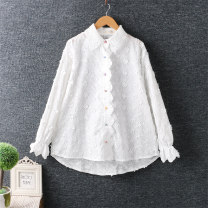 shirt white Average size cotton 96% and above Long sleeves commute Regular Polo collar routine Solid color Straight cylinder Button pure cotton