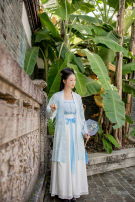 Custom made Hanfu Light blue printed long buttocks, one piece embroidered song wipe, one piece pleated skirt, 3 pieces (long buttocks + bra + pleated skirt) other Midnight Song Hanfu