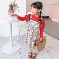 suit Grapefruit rabbit Picture color 90cm,100cm,110cm,120cm,130cm female spring and autumn Korean version Long sleeve + skirt 2 pieces routine There are models in the real shooting Single breasted nothing Solid color Cotton blended fabric birthday Class B Other 100% Chinese Mainland