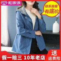Middle aged and old women's wear Autumn 2020 Blue, purple 4XL (recommended 145-160 kg), 3XL (recommended 135-145 kg), l (recommended 90-110 kg), 2XL (recommended 125-135 kg), XL (recommended 110-125 kg) fashion Jacket / jacket easy singleton  Solid color 40-49 years old Cardigan moderate Hood routine