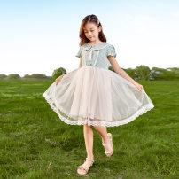 Dress Pink, green female Other / other 120cm,130cm,140cm,150cm,160cm Cotton 80% polyethylene terephthalate (polyester) 20% summer Korean version Short sleeve lattice other Princess Dress Class B