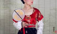 Custom made Hanfu Red tufted silk tapestry with jacquard silk and cotton upper collar, gold double-layer silk skirt with black background and gold silk skirt with white background other female The fabric of the sky