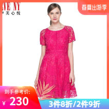 Dress Summer 2017 530 (Rose) 4/S 6/M 8/L 10/XL 12/XXL 14/XXXL Mid length dress singleton  Short sleeve commute Crew neck middle-waisted Solid color 30-34 years old Eve 'NY / Eve lady More than 95% nylon Polyamide fiber (nylon) 100%