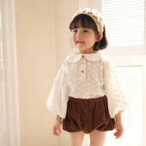 shirt White color button shirt, coffee color bract pants Other / other female 2Y (90cm), 3Y (100cm) sweet, 4Y (110cm), 5Y (120cm), 6y (130cm) YOKI, 7Y (140cm), 8y (150cm) spring and autumn Long sleeves leisure time Solid color cotton Lapel crew neck