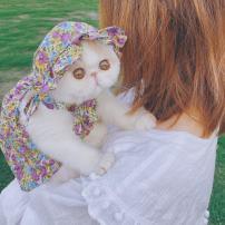 Pet clothing / raincoat currency Dress XS,S,M,L,XL,XXL Other / other princess Purple Floral Skirt, green floral skirt, Purple Floral hat, green floral hat Bag cat cotton