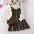 Dress Spring 2021 Black with grey, apricot with caramel Average size Mid length dress Fake two pieces Long sleeves commute Crew neck Loose waist Solid color Socket A-line skirt routine camisole 18-24 years old Type A Korean version 51% (inclusive) - 70% (inclusive) polyester fiber