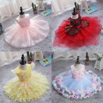 Children's dress female Celeste full dress other 12 months, 18 months, 2 years old, 3 years old, 4 years old, 5 years old princess
