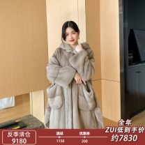 leather and fur Spring 2020 Y. Lanjiaren Silver blue, beige cross M,L,XL,2XL,3XL,4XL Medium length Long sleeves commute Hood Bat sleeve other Mink hair Korean version W057 30-34 years old pocket 96% and above