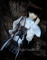 BJD doll zone Dress 1/4 Under 3 years old goods in stock DWS