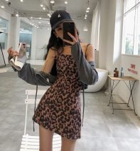 Dress Summer of 2018 Leopard Print S, M Other / other
