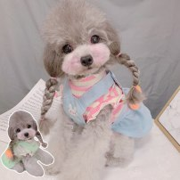 Pet clothing / raincoat currency Dress Glutinous rice princess Green fly sleeves, pink fly sleeves, green strap skirt, blue strap skirt