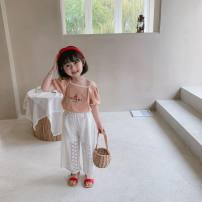 T-shirt White, apricot 80cm,120cm,130cm,100cm,90cm,110cm female summer Short sleeve square neck Korean version There are models in the real shooting Pure cotton (100% cotton content) other Class B Two, four, three, six, five
