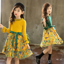 Dress female Other / other 110cm,120cm,130cm,140cm,150cm,160cm Cotton 80% other 20% spring and autumn Korean version Long sleeves Broken flowers Cotton blended fabric other Class B Four, five, six, seven, eight, nine, ten, eleven, twelve, thirteen, fourteen Chinese Mainland Zhejiang Province