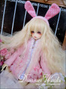 BJD doll zone suit 1/4 Under 3 years old goods in stock Hooded sweater MSD 1 / 4 for girls and SD 1 / 3 for girls DWS DWS