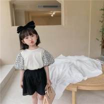 T-shirt Milky white, black Other / other 80cm,90cm,100cm,110cm,120cm,130cm female summer Short sleeve Crew neck Korean version There are models in the real shooting nothing cotton Solid color stx1001 Class A hygroscopic and sweat releasing Three, four, five, six, seven, eight, nine, ten