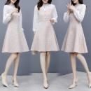 Dress Autumn 2020 Picture color S,M,L,XL Mid length dress singleton  Long sleeves