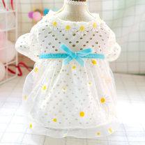 Pet clothing / raincoat Dog Dress XS (2-3 kg recommended) s (4-6 kg recommended) m (7-9 kg recommended) l (10-12 kg recommended) XL (13-16 kg recommended) CBBPET princess white