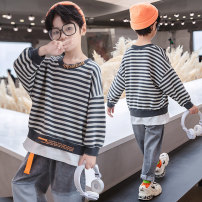 Sweater / sweater Boboelphant / bubble elephant Grey orange male 110cm 120cm 130cm 140cm 150cm 160cm spring and autumn nothing Korean version Socket routine There are models in the real shooting other stripe Other 100% Santansen-f-c271-1 Class B Cotton liner Spring 2021
