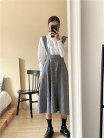 skirt Winter 2020 S, M Picture color