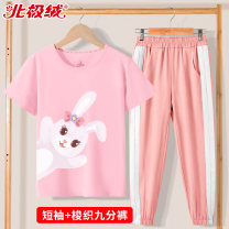suit Beijirog / Arctic velvet 110cm 120cm 130cm 140cm 150cm 160cm 165cm female summer motion Short sleeve + pants 2 pieces Thick style There are models in the real shooting Socket nothing Cartoon animation cotton children Giving presents at school bejirog2020A66 Class B Cotton 100% Summer 2021