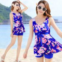 Split swimsuit See description With chest pad without steel support M size suggests 75-95 Jin, L size suggests 95-105 Jin, XL SIZE suggests 105-120 Jin, XXL size suggests 120-135 Jin, 3XL size suggests 135-160 Jin, 4XL size suggests 160-200 Jin