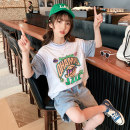 T-shirt Black Hanfan cartoon T, white Hanfan cartoon t Rabbit treasure warm 120cm,130cm,140cm,150cm,160cm,170cm female summer Short sleeve Crew neck Korean version There are models in the real shooting nothing cotton Cartoon animation Cotton 100% SY0227 Class B Sweat absorption Chinese Mainland