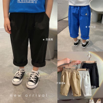 trousers Chen Chen's mother male 80, 90, 100, 110, 120, 130, 140 spring Ninth pants leisure time There are models in the real shooting Casual pants Leather belt middle-waisted cotton Open crotch Cotton 98% other 2% B2188