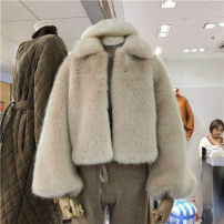 leather and fur Winter of 2018 Other / other Light grey apricot S M L have cash less than that is registered in the accounts Nine point sleeve commute square neck pagoda sleeve other Imitation fur Korean version 18-24 years old 91% (inclusive) - 95% (inclusive)