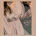 Dress Summer 2021 Average size Mid length dress singleton  Long sleeves commute V-neck Elastic waist Decor zipper other routine 18-24 years old Type H printing 31% (inclusive) - 50% (inclusive) Chiffon polyester fiber