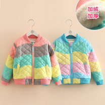 Cotton padded jacket female nothing other Shell element Blue, pink 100cm,110cm,120cm,130cm,140cm,150cm routine Zipper shirt Korean version No model Class C wt6675 2, 3, 4, 5, 6, 7, 8, 9, 10, 11, 12, 13, 14 years old