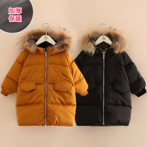 Cotton padded jacket female No detachable cap Cotton 50% and below Shell element Black, Caramel 100cm,110cm,120cm,130cm,140cm,150cm thickening Zipper shirt Korean version No model Solid color other Class B High collar Other 100% 2, 3, 4, 5, 6, 7, 8, 9, 10, 11, 12, 13, 14 years old