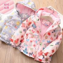 Plain coat Shell element female 90cm,100cm,110cm,120cm,130cm,140cm,150cm Grey blue, pink winter fresh Zipper shirt No model No detachable cap other other Class B