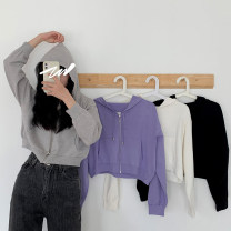 Wool knitwear Spring 2021 Average size Black, gray, white, purple Long sleeves singleton  Socket acrylic fibres 31% (inclusive) - 50% (inclusive) have cash less than that is registered in the accounts routine commute Hood routine Korean version 18-24 years old