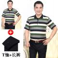 T-shirt Business gentleman thin 170/L,190/4XL,165/M,175/XL,180/XXL,185/XXXL Others Short sleeve Lapel easy daily summer middle age routine Business Casual 2020 stripe pocket other No iron treatment Domestic famous brands
