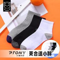 Children's socks (0-16 years old) Medium socks Average size Tony the pig spring and autumn male Class B Spring 2021 Versatile